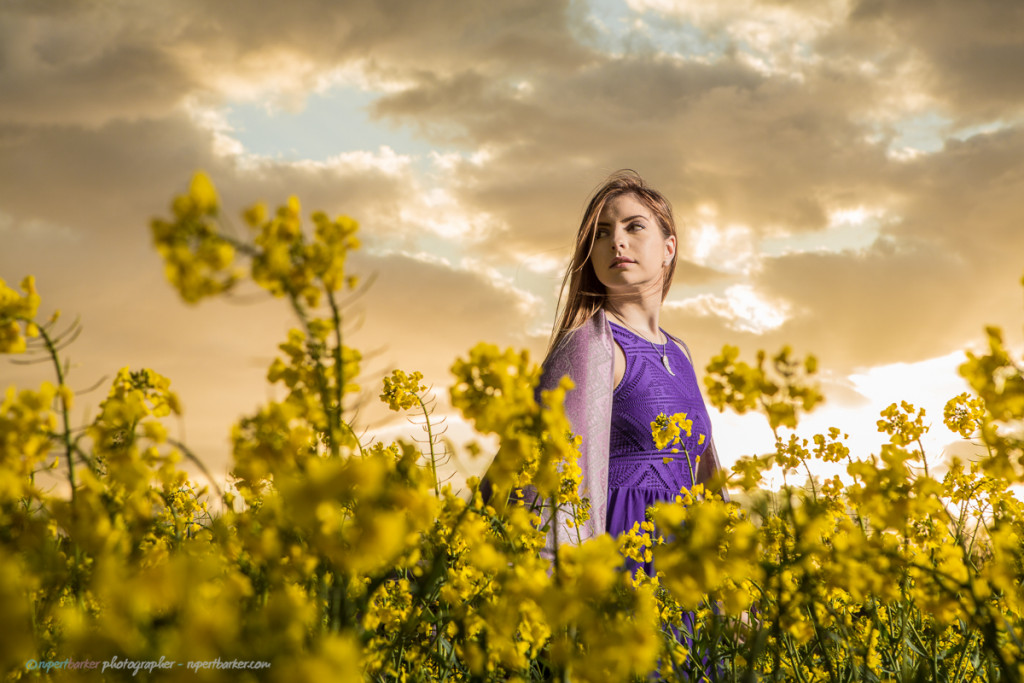 girl field canola oil seed flowers purple Prince
